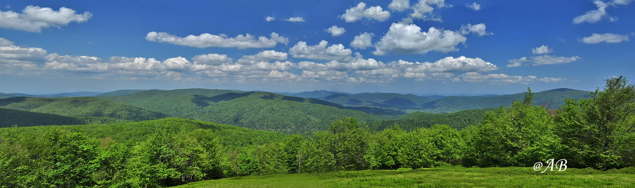 Ciśniańsko - Wetliński Park Krajobrazowy widziany z Paportnej